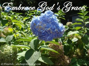 Embrace-Gods-Grace1