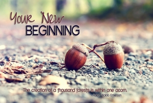 yournewbeginning